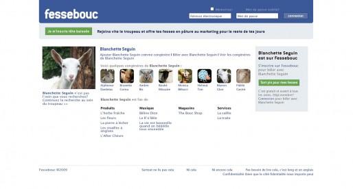 Polémique : vrais / faux profils de politiques sur Facebook