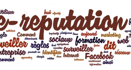 E-réputation des collectivités : revue de presse ou nouveau baromètre d'opinion?