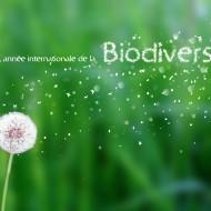 """Biodiversité 2.0 : """"un projet-patrimoine"""""""