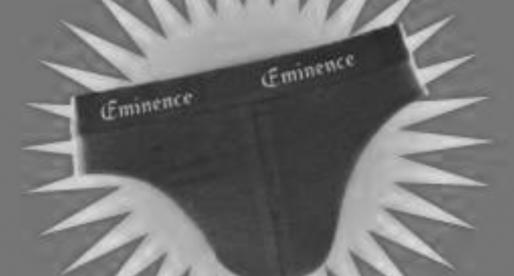 Dircoms publics : éminences grises ou oies blanches ?