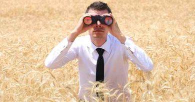 Photo d'un homme en chemise et cravate dans les champs, illustration du garde champêtre web 2.0