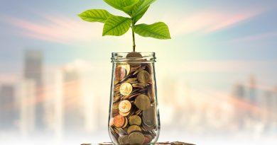 Photo représentant une plante poussant d'un pot de pièces